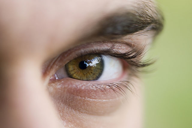 echo-eye