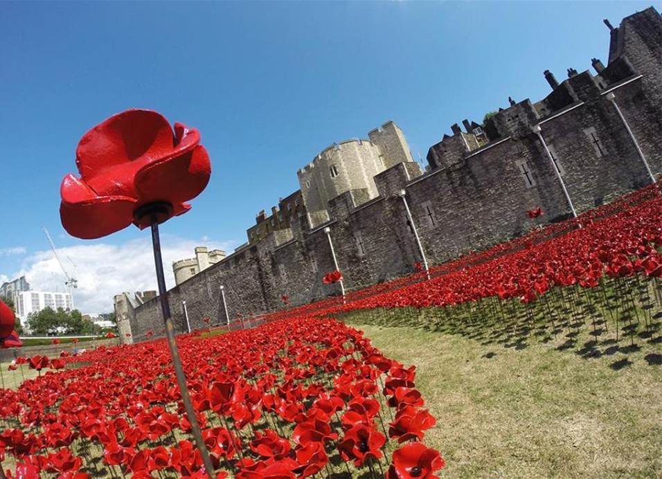 echo-the-tower-of-london-remembers