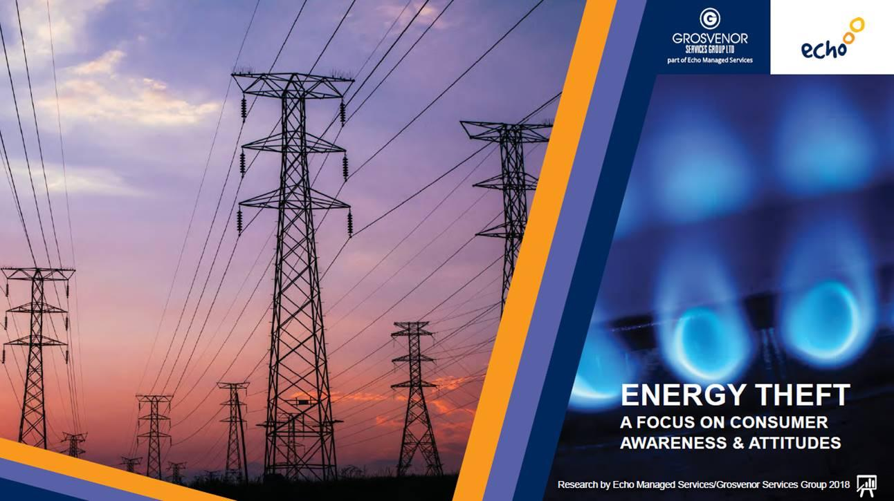 Energy Theft Consumer Research